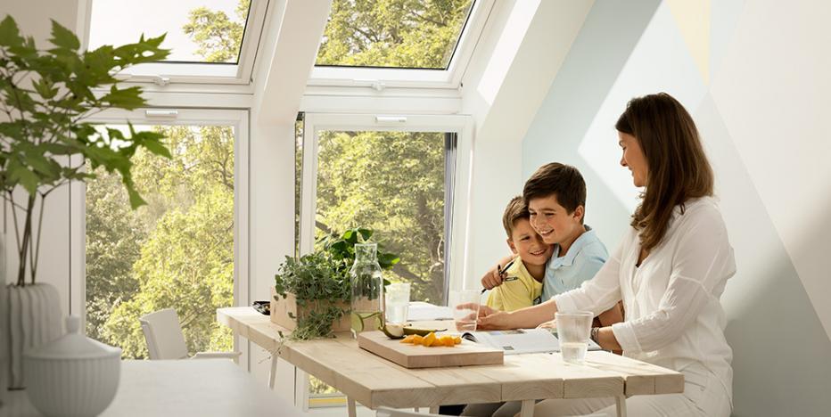 dachflaechenfenster 4